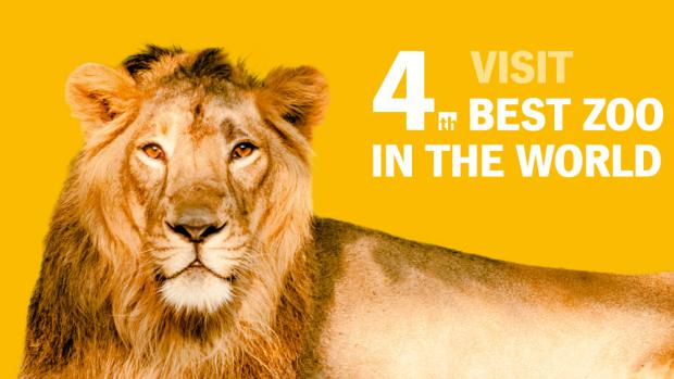 4th best zoo in the world!