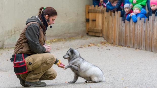 Foto: Petr Hamerník, Zoo Praha