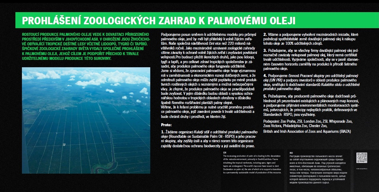 Palm plantation exhibit at Zoo Praha