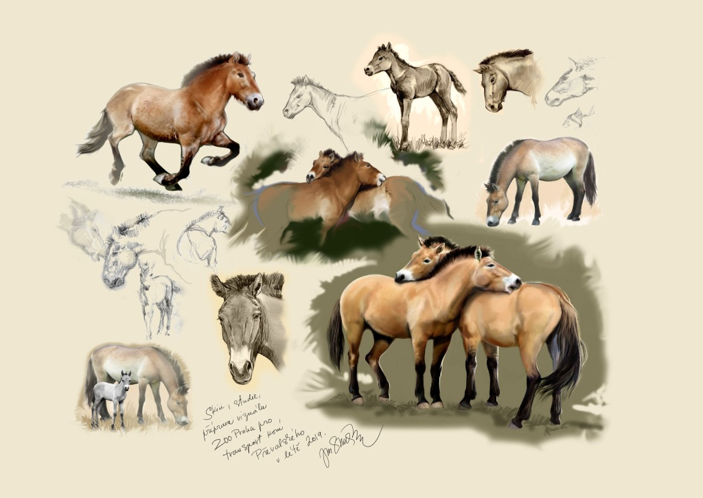 Sketches by painter Jan Sovák. A Visual of the Return of Przewalski's Horses 2019 is at the bottom right.