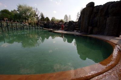 Napuštění bazénu